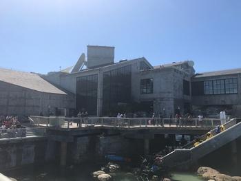 Bild zum Eintrag Monterey Bay Aquarium - Cannery Row 851, 93940 Monterey